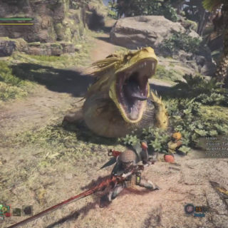 Display picture for the Great Jagras Guide