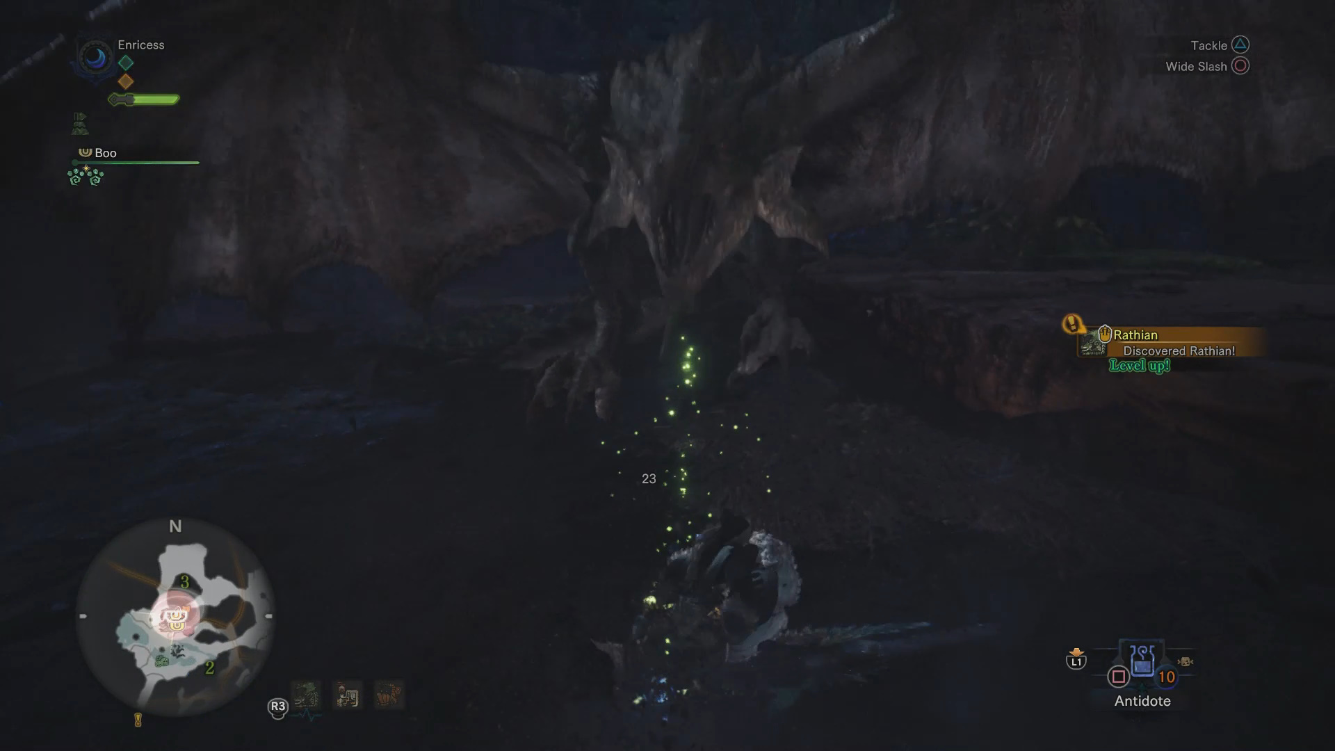 rathian ancient forest