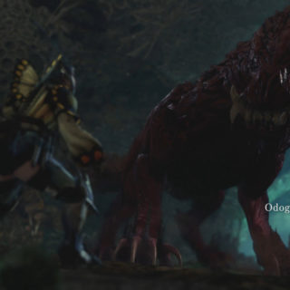 Featured image on Odogaron Guide