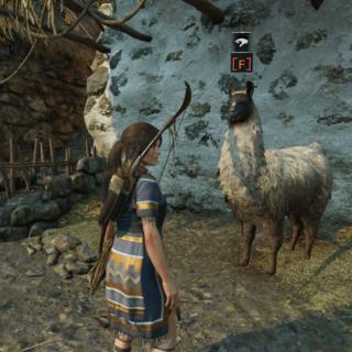 Llama Locations 1 in Shadow of the Tomb Raider
