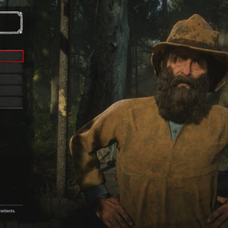 Garment Sets Trapper in Red Dead Redemption 2