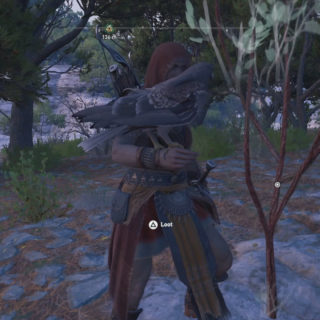 Scavenging wood on land in Assassin's Creed Odyssey