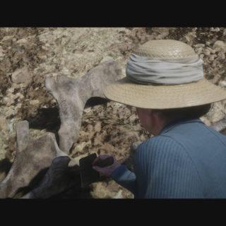 Dinosaur Bones Locations Guide Red Dead Redemption 2