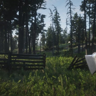 Double Bit Hatchet in First Person Mode