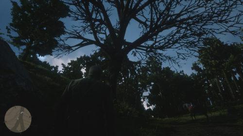 Dreamcatcher Location 3 Dead Tree Along Road (Annesburg Area)