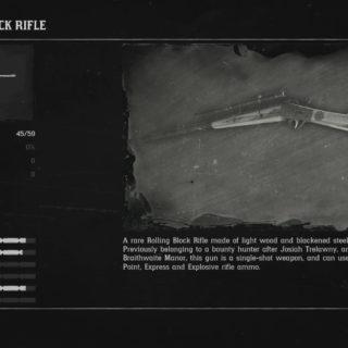 Rare Rolling Block Rifle Compendium Entry