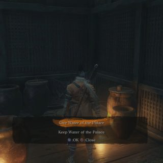 What to Do With Water of the Palace in Sekiro Shadows Die Twice
