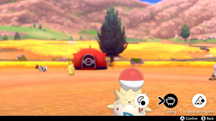 Image showing how to play with Pokemon in Pokemon Sword and Pokemon Shield.