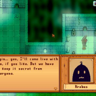 Featured image on How to Get Krobus as Roommate in Stardew Valley guide