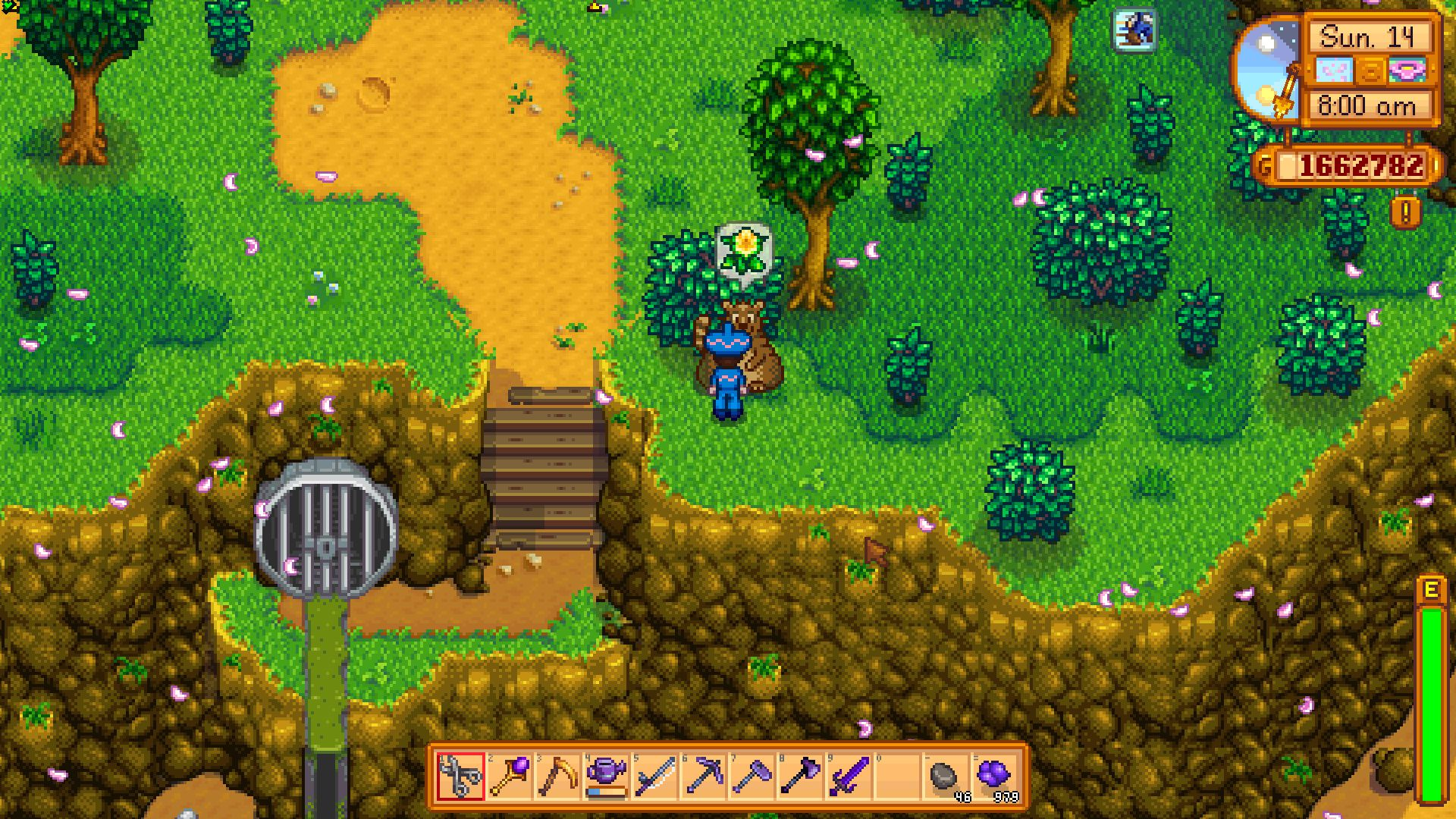 Everything You Need To Know About The Trash Bear In Stardew Valley If you want to get there, you need a stardew valley sewer key. the trash bear in stardew valley