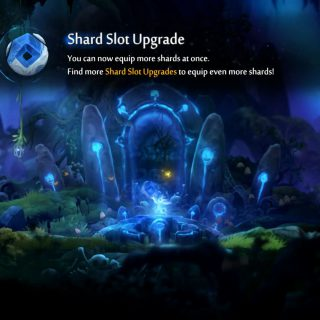 Featured image on How to Get More Shard Slots guide