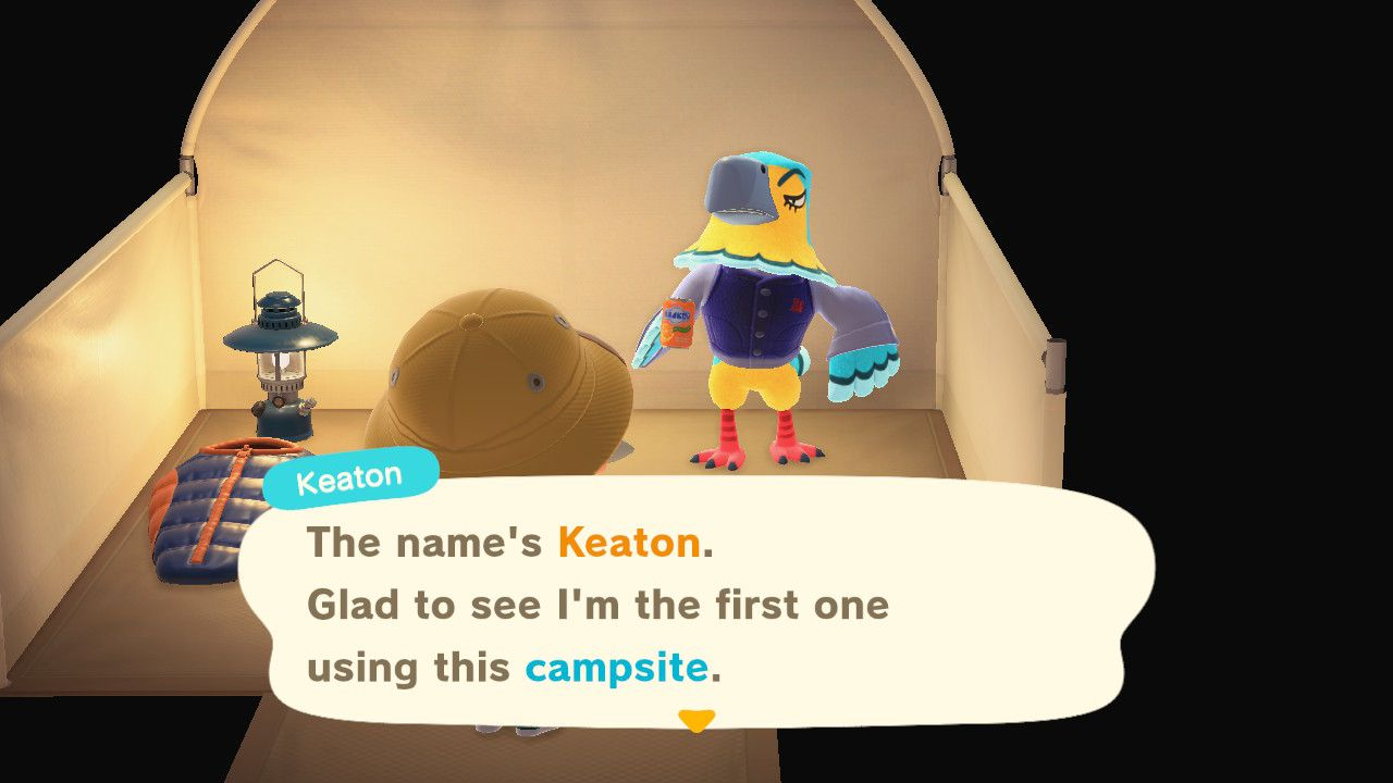 Image showing the first guest to use the Campsite in Animal Crossing New Horizons.