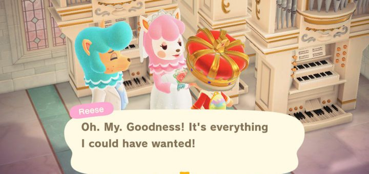 Featured image on Animal Crossing New Horizons Wedding Photos Event Guide
