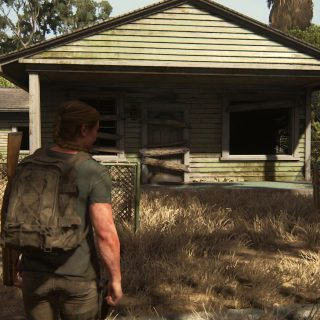 Featured image on 2425 Constance Collectibles Locations Guide for TLOU 2