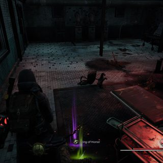 Featured image on How to Get the Ring of Honor in Subject 2923 Remnant From the Ashes.