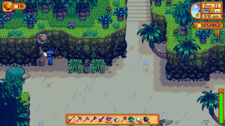 Image showing how to wake the turtle on Ginger Island in Stardew Valley.