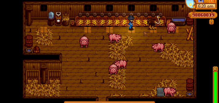 Featured image on How to Get Ostriches on Your Farm in Stardew Valley guide.