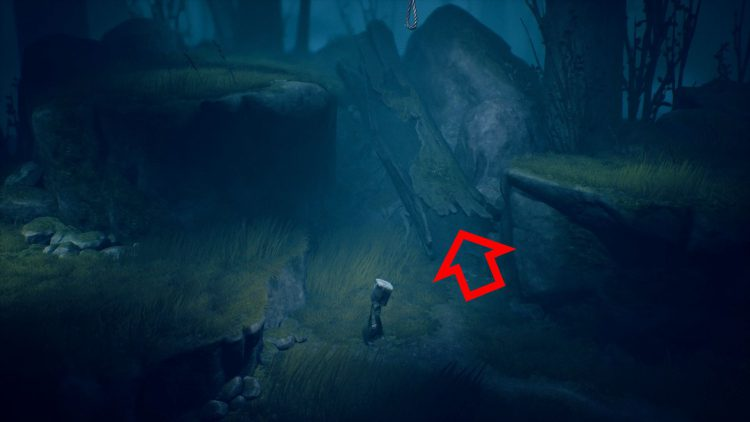 Image showing where to reach the rope in Wilderness level of Little Nightmares 2.