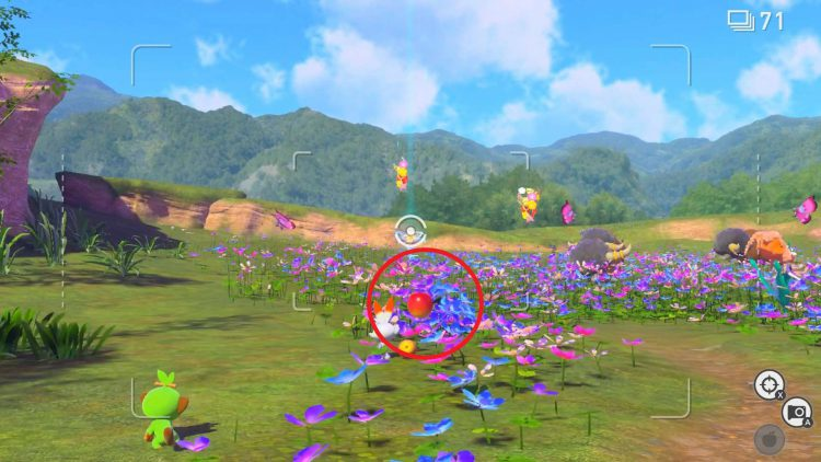 Image showing where the Pichu is hiding in the flower patch.
